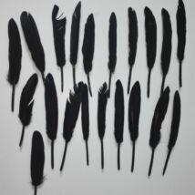 Fekete színű kemény toll