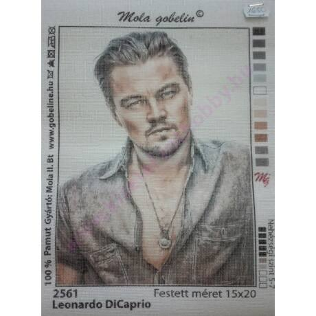 Tűgobelin  15x20 cm, Leonardo DiCaprió
