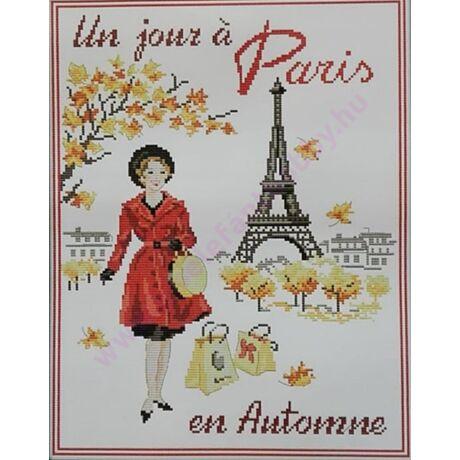 Párizsos keresztszemes kép cérnával 34x42 cm
