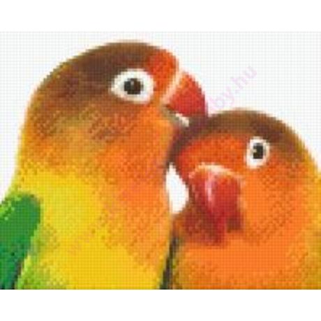 Két papagáj