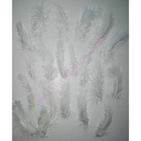 Fehér színű puha toll